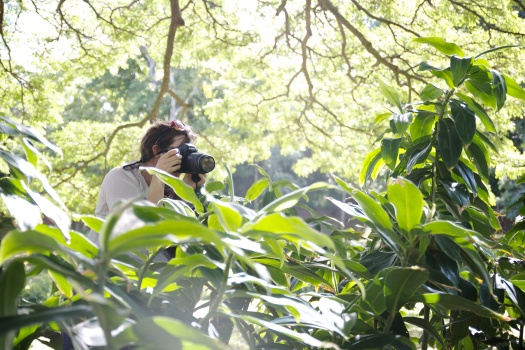 moanalua gardens 1