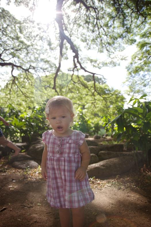 moanalua gardens (5)
